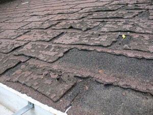Failure of asphalt shingled roof leading to home water leaks..