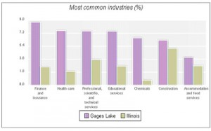 Most Common Industries in Gages Lake IL