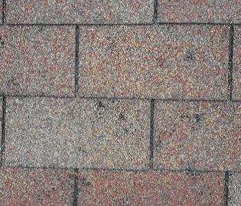 Should I Repair Replace My Asphalt Shingle Roof Zeo