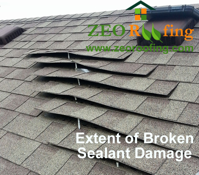Roof Damage Due To Broken Shingle